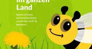 Aldi Süd Gewinnspiel Bienen
